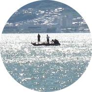 国際湖沼流域管理推進活動